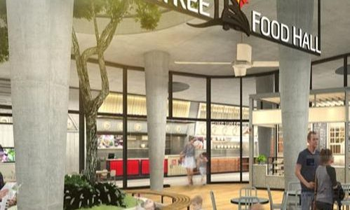 Concept – Supertree Food Hall